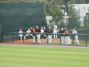 Bullpen, Ed Smith Stadium, Sarasota, FL